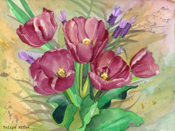 29-Red Tulips